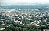 Больные деревья в Обнинске заменят новыми
