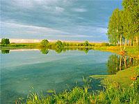 Председатель правительства Московской области Андрей Шаров сообщил в понедельник о готовящемся законопроекте, согласно которому муниципалитеты получат право переводить земли в сельскохозяйственное назначение.